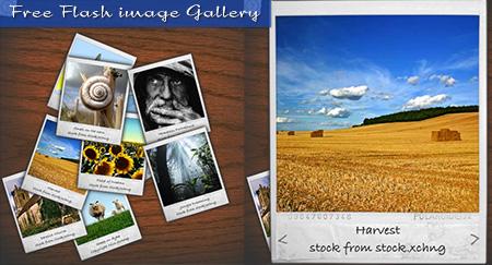 flash web image gallerys