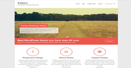 wordpress_responsive_Esteem_theme