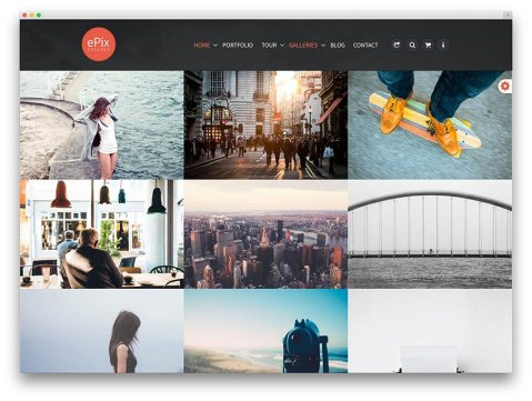 Best premium theme collections
